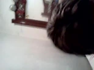 Sanie lion sexi phicar